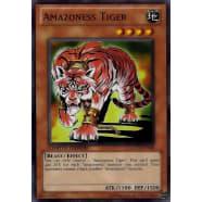 Amazoness Tiger Thumb Nail