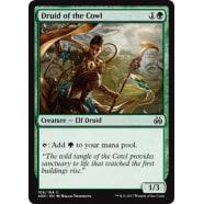 Druid of the Cowl Thumb Nail