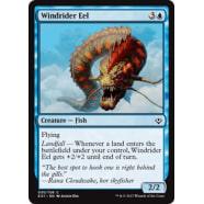 Windrider Eel Thumb Nail