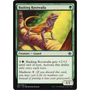 Basking Rootwalla Thumb Nail