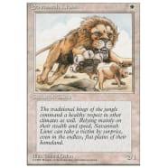 Savannah Lions Thumb Nail