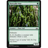 Portcullis Vine Thumb Nail