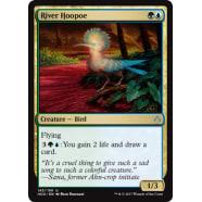 River Hoopoe Thumb Nail