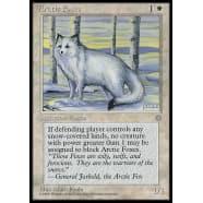 Arctic Foxes Thumb Nail