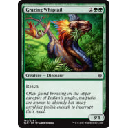 Grazing Whiptail Thumb Nail