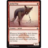 Jackal Pup Thumb Nail
