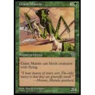 Giant Mantis Thumb Nail