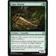 Algae Gharial Thumb Nail