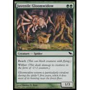 Juvenile Gloomwidow Thumb Nail