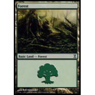 Forest A - 298 Thumb Nail