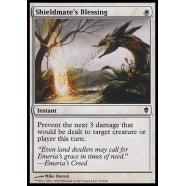 Shieldmate's Blessing Thumb Nail