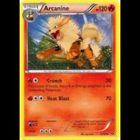 Arcanine - 13/99 Thumb Nail