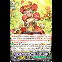 Ranunculus Flower Maiden, Ahsha Thumb Nail