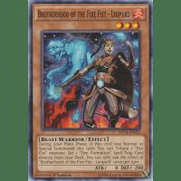 Brotherhood of the Fire Fist - Leopard Thumb Nail