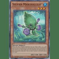 Sylvan Marshalleaf Thumb Nail