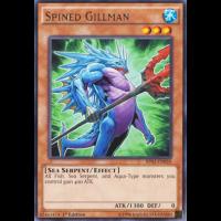 Spined Gillman Thumb Nail