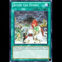 After the Storm Thumb Nail