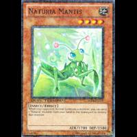 Naturia Mantis Thumb Nail