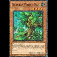 Naturia White Oak Thumb Nail
