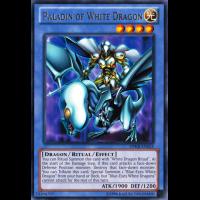 Paladin of White Dragon Thumb Nail