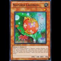 Naturia Ladybug Thumb Nail