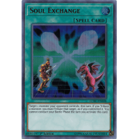 Soul Exchange Thumb Nail