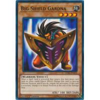 Big Shield Gardna Thumb Nail