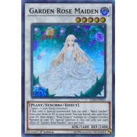 Garden Rose Maiden Thumb Nail