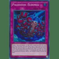 Paleozoic Eldonia Thumb Nail