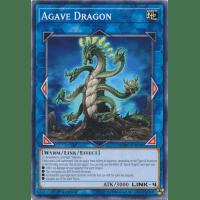 Agave Dragon Thumb Nail