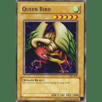 Queen Bird Thumb Nail
