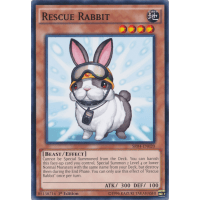 Rescue Rabbit Thumb Nail