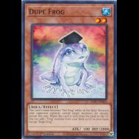 Dupe Frog Thumb Nail