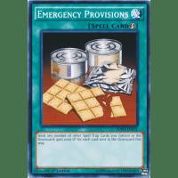 Emergency Provisions Thumb Nail