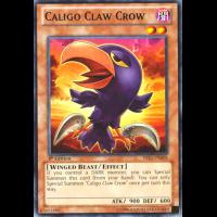 Caligo Claw Crow Thumb Nail