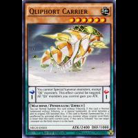 Qliphort Carrier Thumb Nail