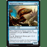 Shipwreck Moray Thumb Nail