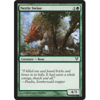Nettle Swine Thumb Nail