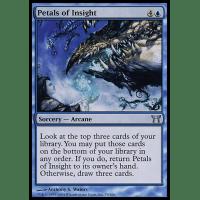Petals of Insight Thumb Nail
