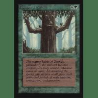 Ironroot Treefolk Thumb Nail