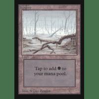 Swamp A Thumb Nail