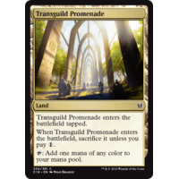 Transguild Promenade Thumb Nail