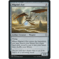 Pilgrim's Eye Thumb Nail