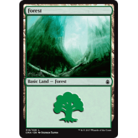 Forest K Thumb Nail