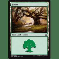 Forest L Thumb Nail