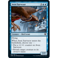 Aven Surveyor Thumb Nail