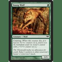Young Wolf Thumb Nail
