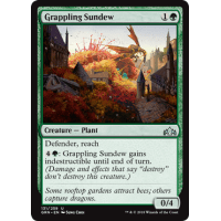 Grappling Sundew Thumb Nail