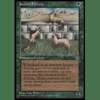 Joven's Ferrets Thumb Nail