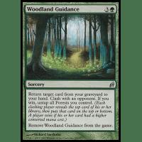 Woodland Guidance Thumb Nail